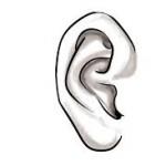 جراحی گوش برجسته